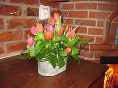 Tulppaanien loistoa