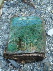 kuvia 10.8.2011 (kesaloma ja touhoku) 1587 muokattu