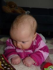 31.1.2012 093 muokattu
