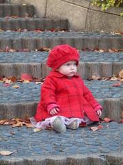 kuvia24.11.2012_1004