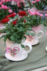 ruusukuppi