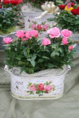 ruusuinen