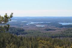 Vuotjärvi-Syväri suunta