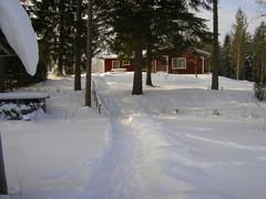 lumipolku rannasta talolle