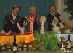 BOB-puppy Speciality show 2004