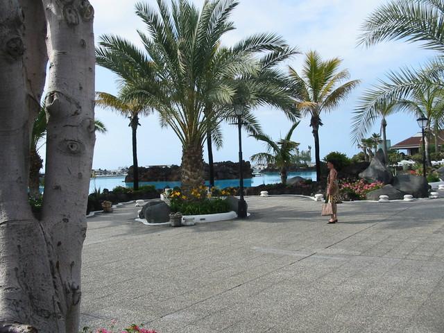 Turisti palmujen katveessa