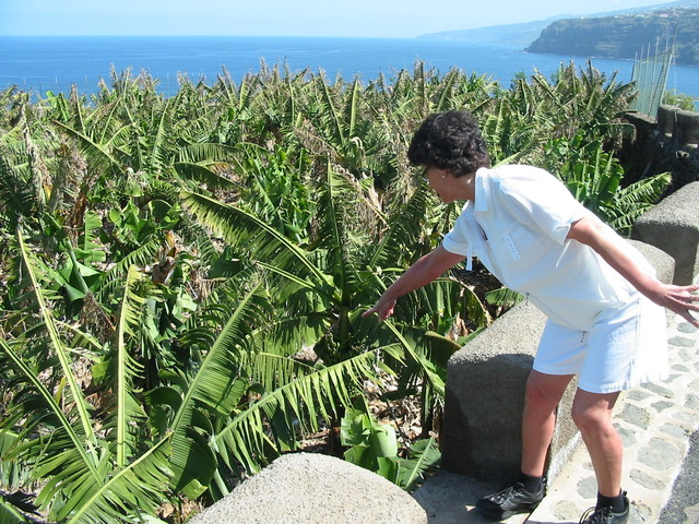 Nälkäinen turisti himoitsee banaaneja