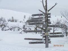 vuontisp_lapponia-hiihto-