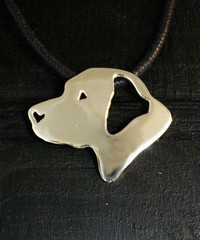 Labradorinnoutaja pää