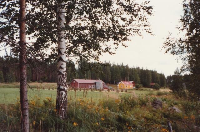 Airi Kantanen: Lyydi Väisäsen ja isniä kotipaikka Röykiö, Sääksjärven rannalla. Se oli isäni koti ja meille tuli uusi 1 km