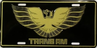 TransAm_license_plate_196.JPG&width=400&height=500