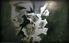 Pia Simonen, Gladiolus