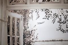 ikkunamaisema lentokone