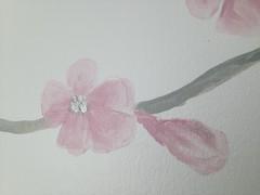 kirsikkoksa_2_kukka_ja_nuppu