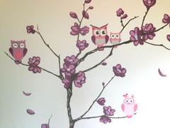 pöllöt kirsikkapuussa