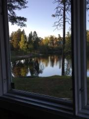 mannisto_ikkuna