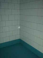 Pesuhuoneen seinälaatoitus