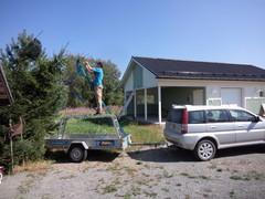 Latvavarrennus 5 metrin korkeuteen