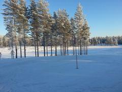 Upea talvinen näkymä 5 griiniltä