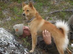 Isäntä lepää, mutta koira vartioi