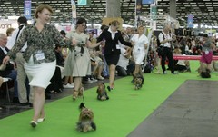 World Dog Show Pariisi 8.7.2011