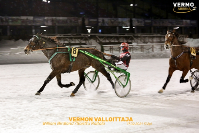 William Birdland Vermon Valloittaja 170221 (c) Pekka Salonen