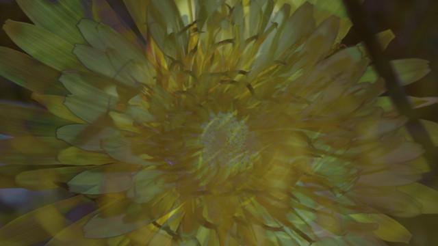 vlcsnap-2013-12-18-21h48m03s112