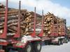 25.25 metrinen puutavarayhdistelmä.8-akselia ja 60 / 68 tonnia.