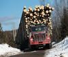USA Canada logging05-xd