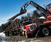 lUSA Canada logging11-xd