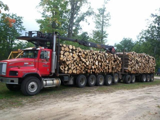 truck_1_op_800x600