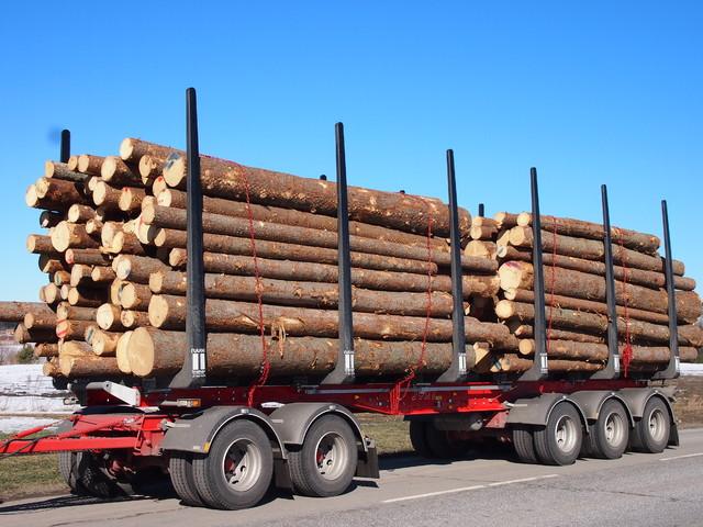 Viisiakseliset puutavaravaunut lisääntyvät nyt nopeasti.