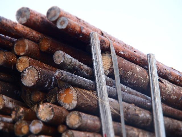 Alupankoilla tuppaa kuormat hörpätä yli tappien talvipainoisellakin puulla. Vaunu neliakselinen .