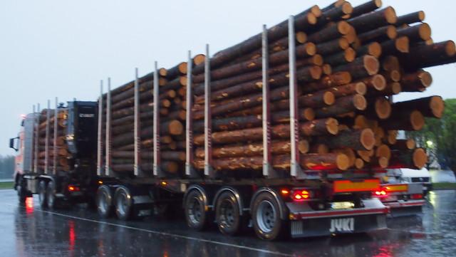 68 tonnia ja tapit täynnä tuoretta tukkia.