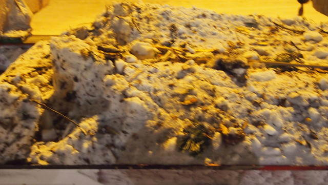 Lunta ja parkkia perävaunun kääntökehän päällä.