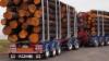 95 tukkia ja 52 tonnia puuta.
