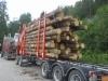 Pankkojen kuormituskoe painavalla puutavaranipulla.