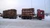 Terminatorit ja 76 tonninen on toimivin paketti.