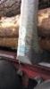 Kopiokankkojen maalilaatu on sen myyntihinnan mukainen.