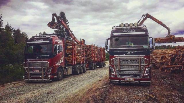 TR 2020 siirtoautotekniikka hiotaan huippuunsa. Metsäpään ominaisuudet, purku-, ja kohtaamistekniikka ovat Tr 2020 kehitystyössä tärkeässä asemassa.