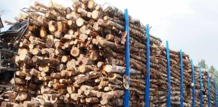 1Nippulaatuun ja lastauksen tarkkuusvaatimuksiin vaikuttaa puun laatu ja katkonta.