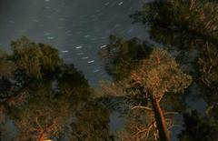 Tähtiviirut