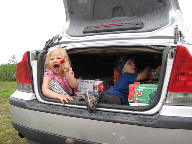 Lapset mansikkaretkellä 2012