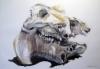 """""""Hippo"""", 70x100 cm, 2012"""