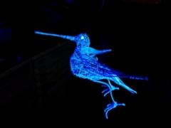 Gallinago 2021. UV-rautalankaveistos