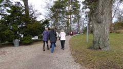 Tamminiemen puistoa