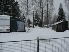 talvikuva