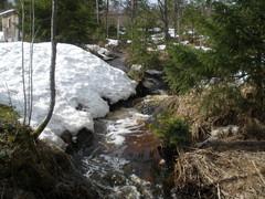 Kevät saapuu Höytiälle