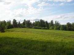 Kesäretki Tervoon 2010, Haapamäen kylälle