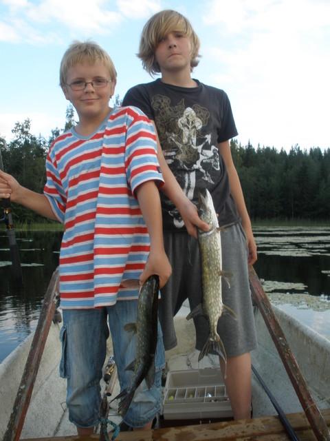 Pielavedellä kesällä 2009